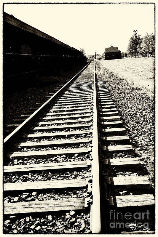 Train Poster featuring the photograph Tracks Of Our Ancestors by Leslie Leda