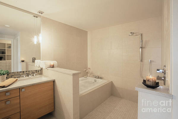 Architecture Poster featuring the photograph Tub And Shower In Bathroom by Andersen Ross