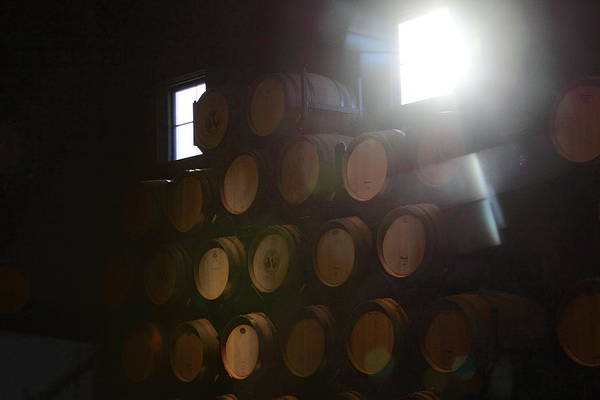 Wine Barrels Poster featuring the photograph Wine Barrels by Viktor Savchenko