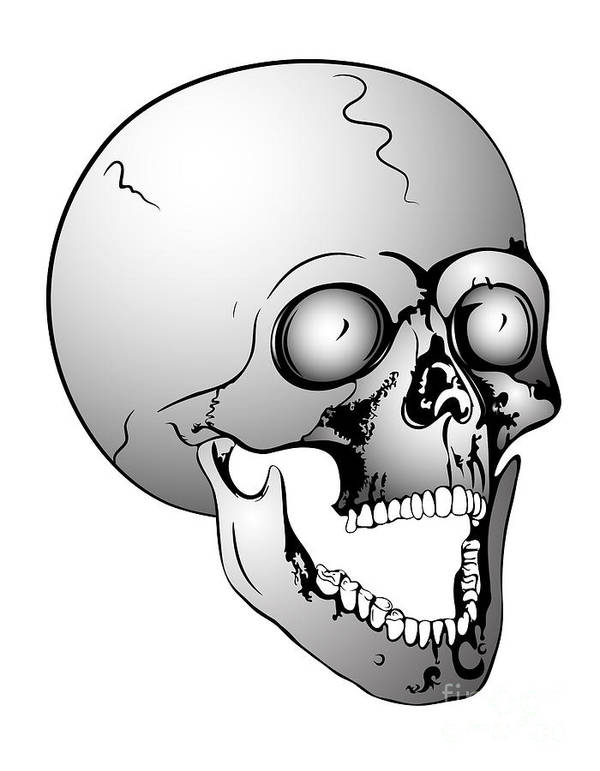 Scull Poster featuring the drawing Screaming Skull by Michal Boubin