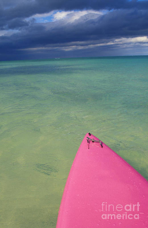 Adventure Poster featuring the photograph Tip Of Pink Kayak by David Cornwell/First Light Pictures, Inc - Printscapes