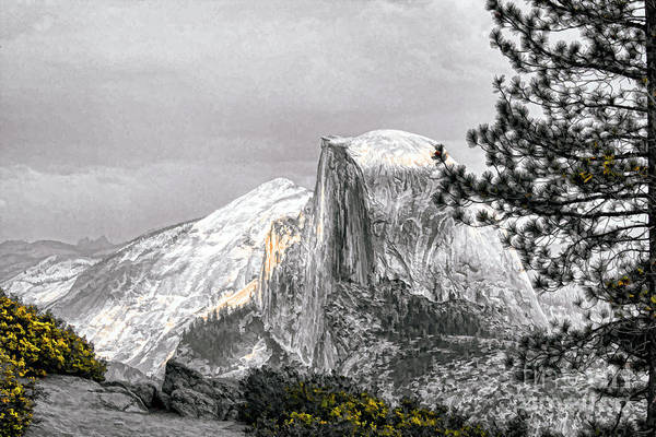 Yosemite Poster featuring the photograph Yosemite Half Dome by Chuck Kuhn