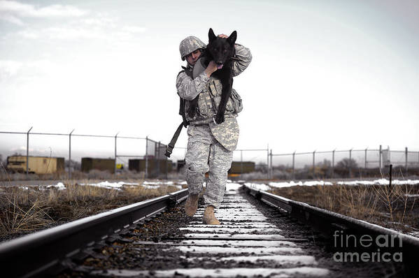 Friendship Poster featuring the photograph A Military Dog Handler Uses An by Stocktrek Images