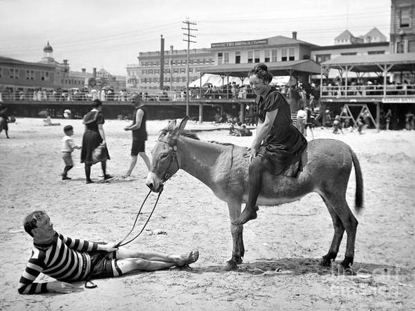 1901 Poster featuring the photograph Atlantic City: Donkey by Granger