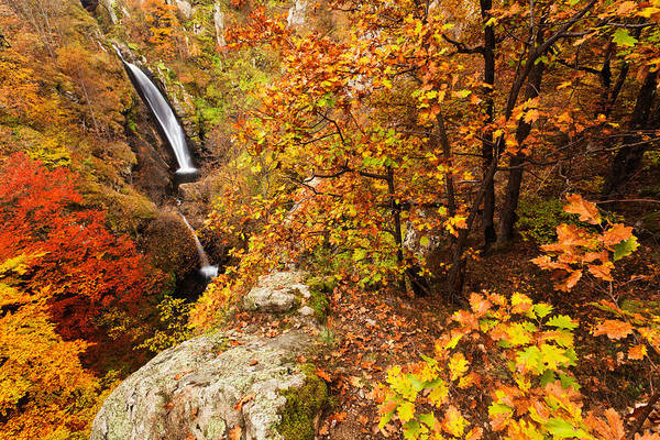 Waterfall Poster featuring the photograph Autumn Falls by Evgeni Dinev