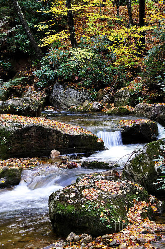 Rushing Mountain Stream Poster featuring the photograph Autumn Rushing Mountain Stream by Thomas R Fletcher
