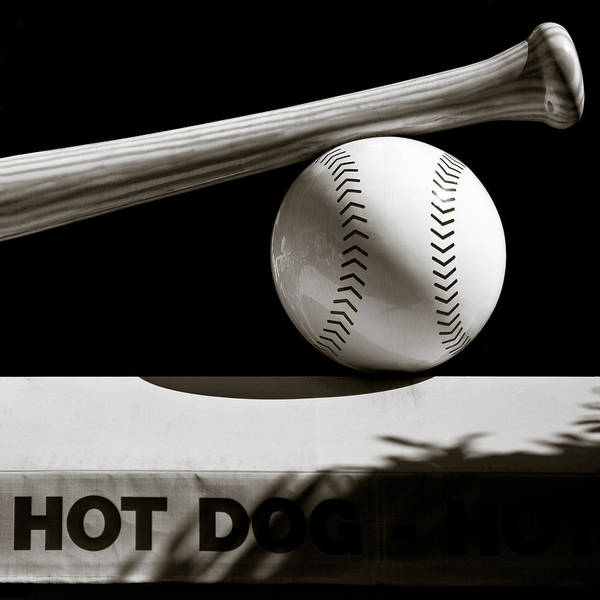 Baseball Poster featuring the photograph Bat And Ball by Dave Bowman