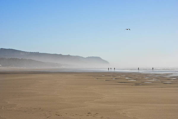 Seascape Seascapes Oregon Pacific Coast Beach Beaches Yachats Beachcimber Beachcombers Comber Combers Deserted Flying Gull Sand Sandy Fog Foggy Secluded Solitude Poster featuring the photograph Beachcombers by Wilbur Young