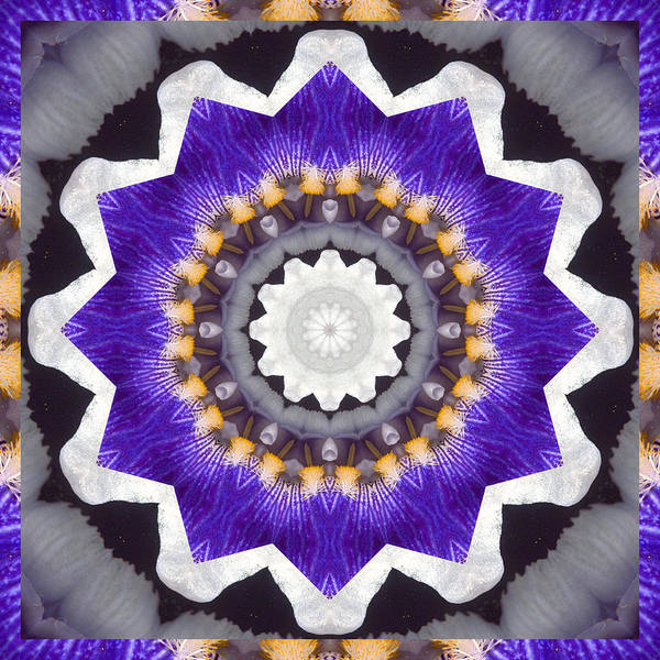 Mandalas Poster featuring the photograph Bliss by Bell And Todd