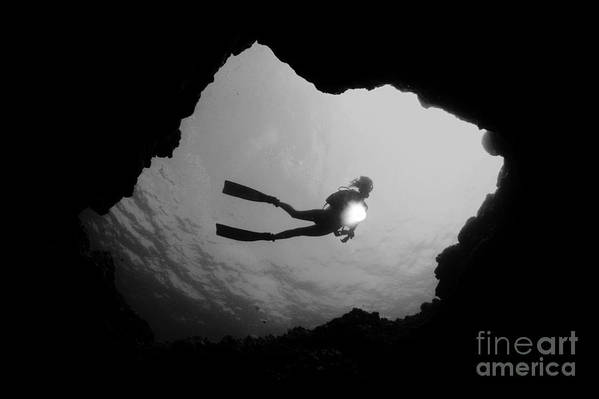 Art Medium Poster featuring the photograph Cave Diver - Bw by Dave Fleetham - Printscapes