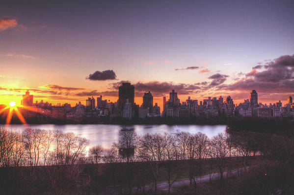 Central Park Sunrise Poster featuring the photograph Central Park Rises by Ariane Moshayedi