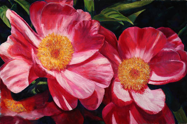 Peonies Poster featuring the painting Dance Of The Peonies by Billie Colson