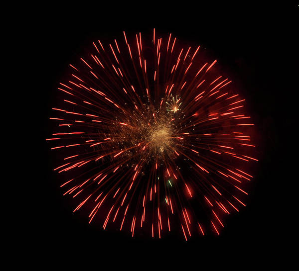 Fireworks Poster featuring the photograph Dandelion On Fire by Vijay Sharon Govender