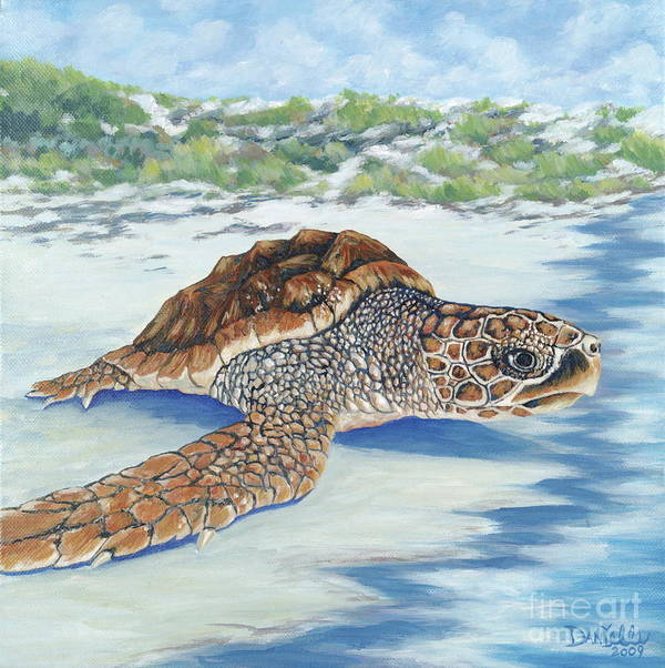 Sea Turtle Poster featuring the painting Dreaming Of Islands by Danielle Perry