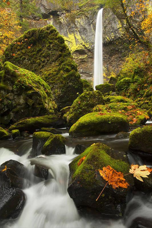 Elowah Falls Poster featuring the photograph Elowah Autumn by Mike Dawson