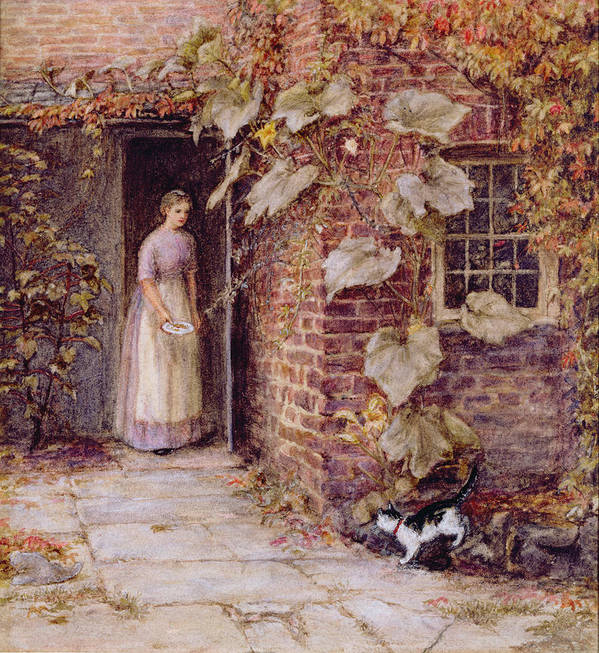 Cat Poster featuring the painting Feeding The Kitten by Helen Allingham