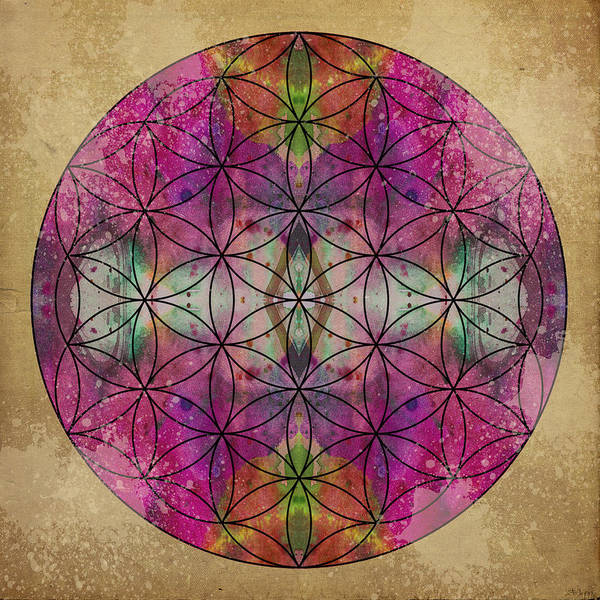 Mandala Poster featuring the digital art Flower Of Life by Filippo B