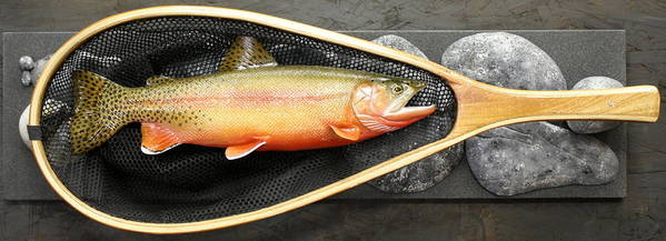 Salmon Poster featuring the sculpture Golden Trout River Slice by Eric Knowlton
