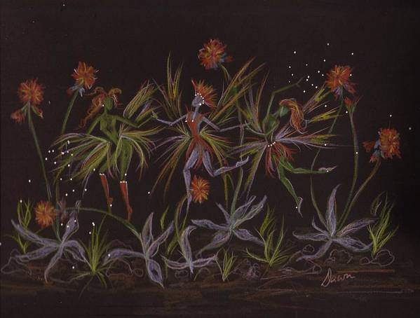 Fairies Poster featuring the drawing Hawkweed Dance by Dawn Fairies