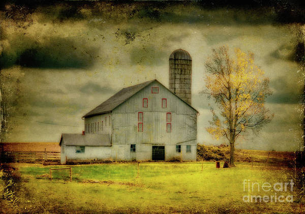 Barns Poster featuring the photograph Looking For Dorothy by Lois Bryan