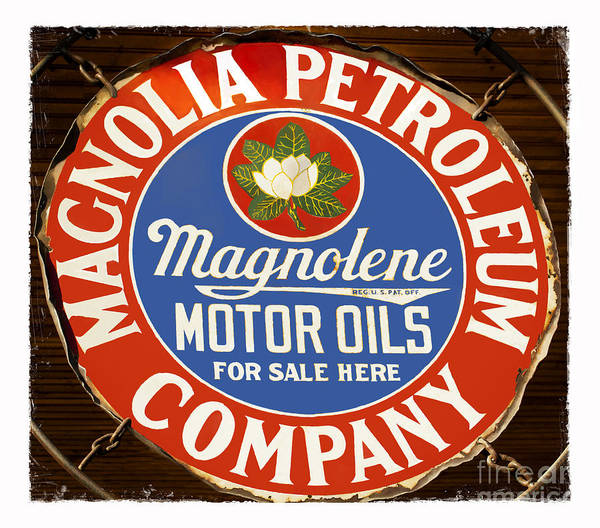 Petroleum Poster featuring the photograph Magnolia by Elena Nosyreva