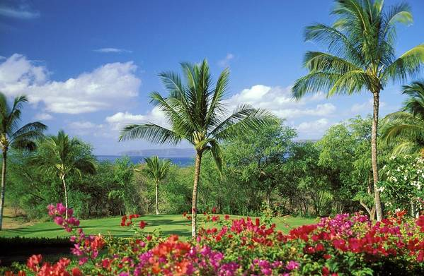 Afternoon Poster featuring the photograph Makena Beach Golf Course by Peter French - Printscapes