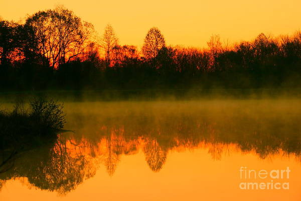 Golden Sunrise Poster featuring the photograph Misty Sunrise by Morgan Hill