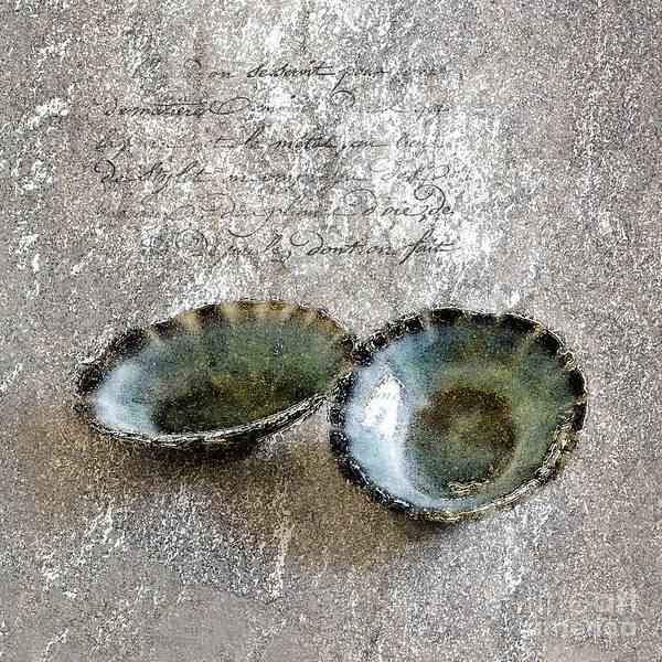 Seashells Poster featuring the photograph Of The Sea 2 by Betty LaRue