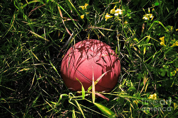 Basketball Photographs Poster featuring the photograph Old Basketball In The Grass by Robert Sawin