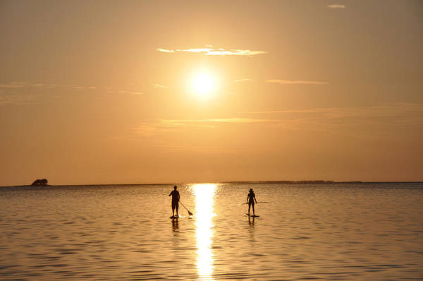 Paddle Boarding Out Of The Sunset Poster featuring the photograph Paddle Boarding Out Of The Sunset by Bill Cannon