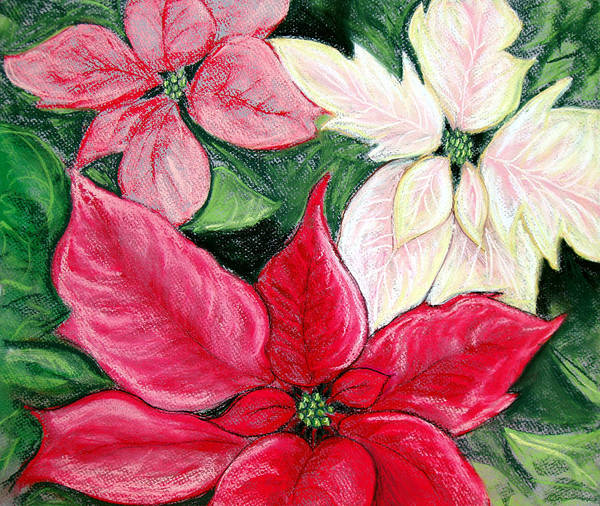 Poinsettia Poster featuring the pastel Poinsettia Pastel by Nancy Mueller