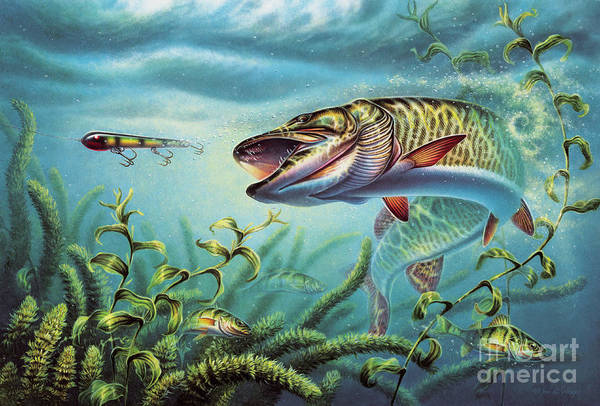 Muskie Poster featuring the painting Provoked Musky by Jon Q Wright