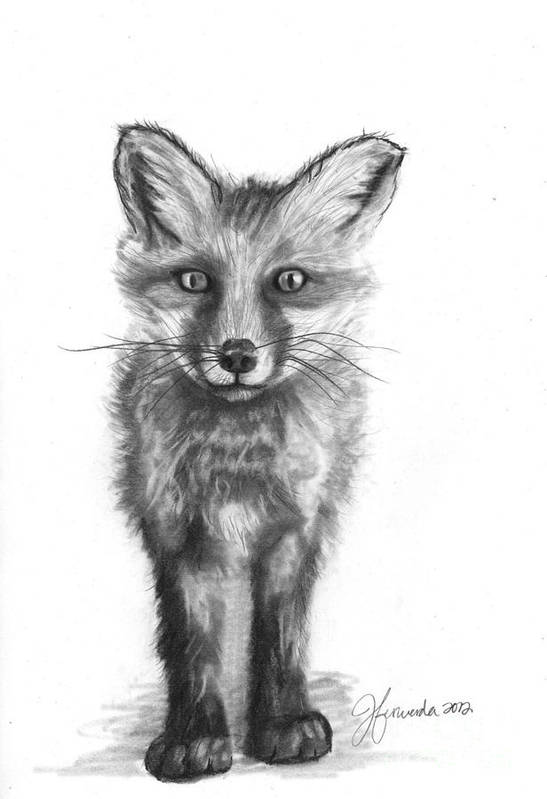 Red Fox Poster featuring the drawing Purpose In My Steps by J Ferwerda
