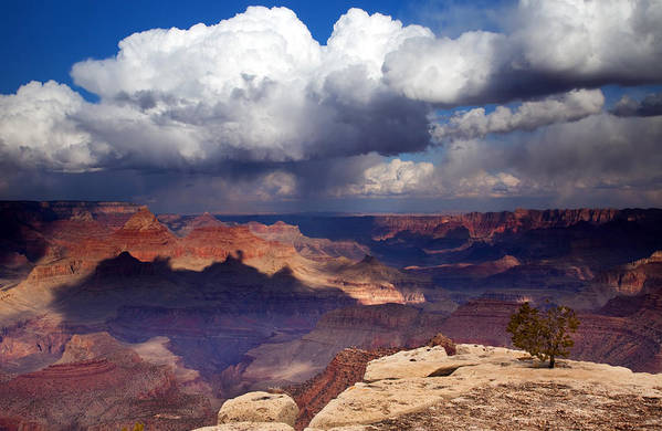 Grand Canyon Poster featuring the photograph Rain Over The Grand Canyon by Mike Dawson