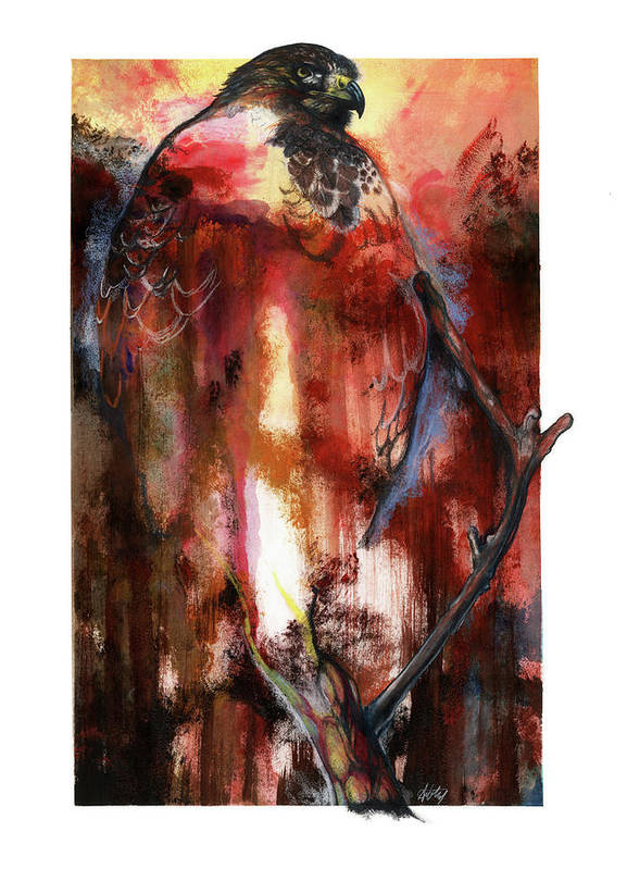 Red Poster featuring the mixed media Red Tail by Anthony Burks Sr