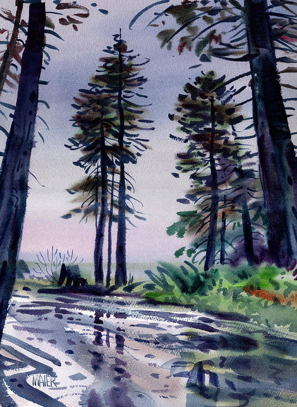 Redwoods Poster featuring the painting Redwood Reflections  by Donald Maier
