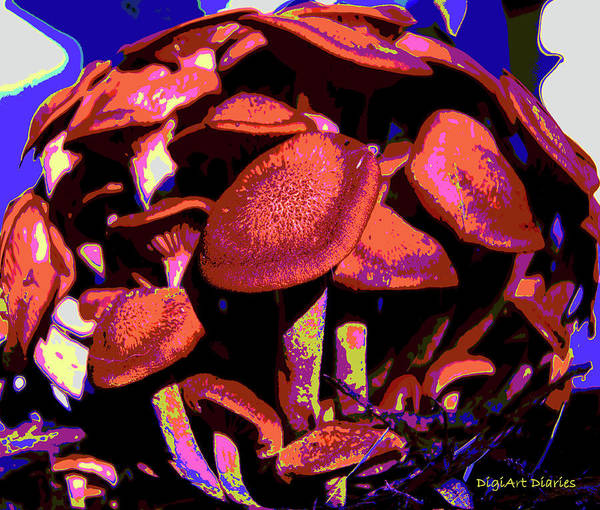 Mushrooms Poster featuring the digital art Shimmering Shrooms by DigiArt Diaries by Vicky B Fuller