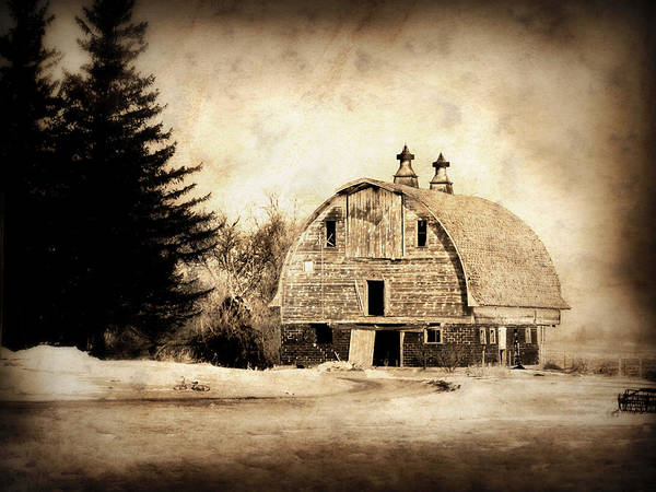 Barn Poster featuring the photograph Somethings Missing by Julie Hamilton