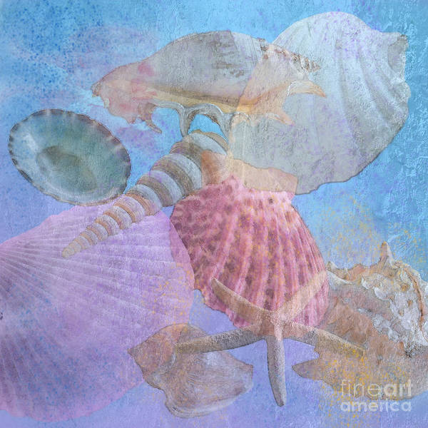 Shell Poster featuring the photograph Swept Out With The Tide by Betty LaRue