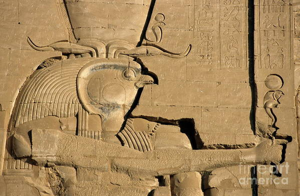 Africa Poster featuring the photograph The Ancient Egyptian God Horus Sculpted On The Wall Of The First Pylon At The Temple Of Edfu by Sami Sarkis