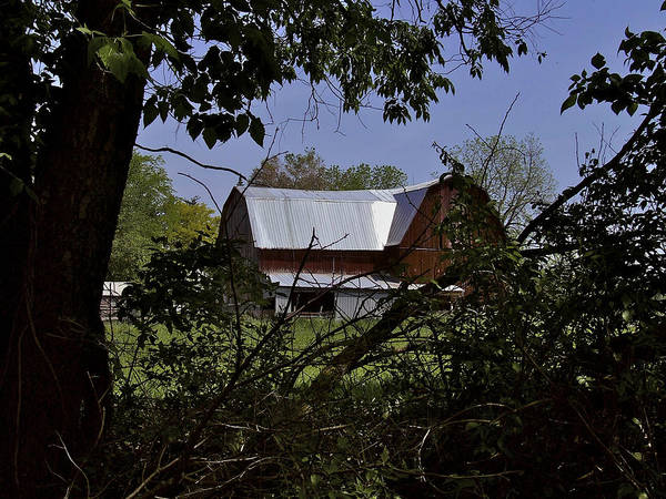 Tin Roofed Barn Poster featuring the photograph Tin Roofed Barn by Richard Gregurich