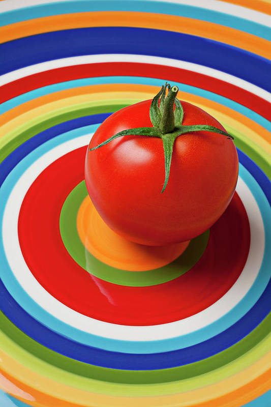 Tomato Plate Circle Food Fruit Poster featuring the photograph Tomato On Plate With Circles by Garry Gay