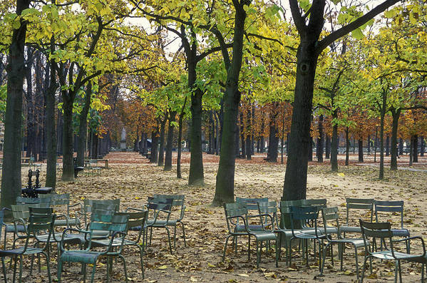 Outdoors Poster featuring the photograph Trees And Empty Chairs In Autumn by Stephen Sharnoff