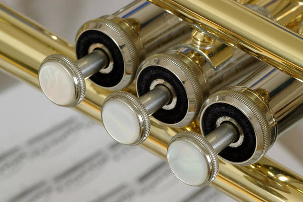 Trumpet Poster featuring the photograph Trumpet Valves by Frank Tschakert
