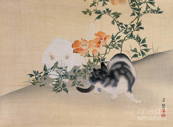 Black; White; Stripes; Striped; Hibiscus; Flower; Flowers; Chat; Chats; Asian; Oriental; Animal Poster featuring the painting Two Cats by Japanese School