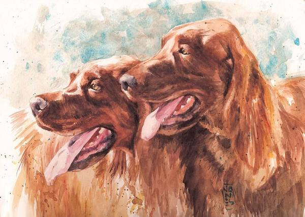 Irish Setter Dog Poster featuring the painting Two Redheads by Debra Jones