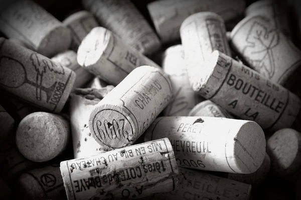 Wine Corks Poster featuring the photograph Uncorked by Georgia Fowler