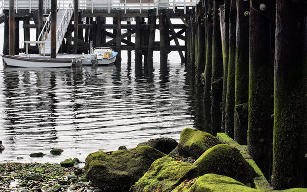 Dockside Print featuring the photograph Dockside 2 by JC Findley