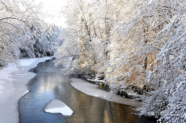 West Virginia Print featuring the photograph Morning Light Fresh Snowfall Gauley River by Thomas R Fletcher
