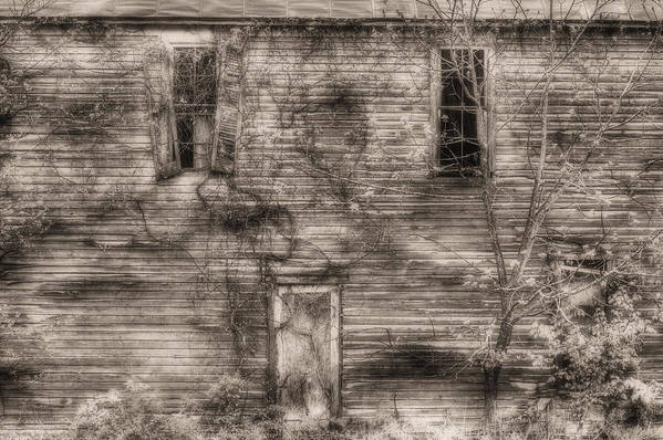 Haunting Print featuring the photograph Haunting by JC Findley
